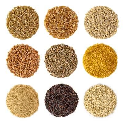 Cucina vegana: i cereali sono fondamentali, gustosi e utili