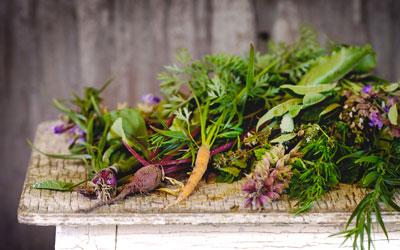 Bistròbiò: cucina vegana con solo ingredienti di origine vegetale 100% di stagione